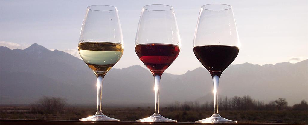 Os benefícios do vinho